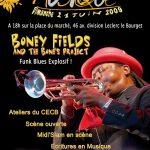 Flyer Concert Boney Fields